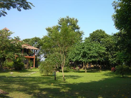 Sapana Village Lodge: garden