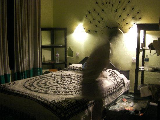 Sapana Village Lodge: Honeymoon Suite Room