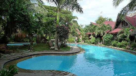 Alona Tropical Beach Resort: Pool Area w/ Villas in the background