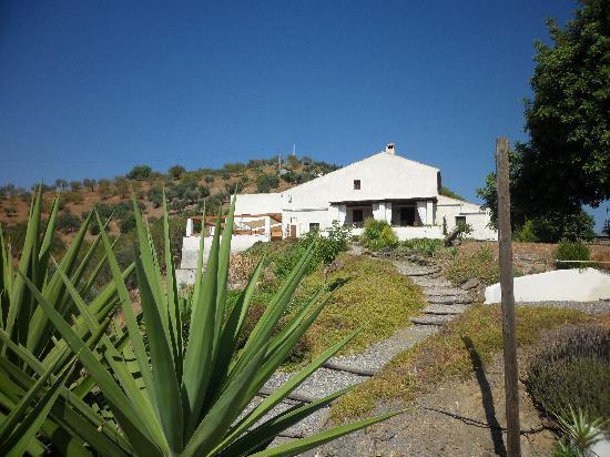 Las Nuevas Alora: Rear view of Las Neuvas