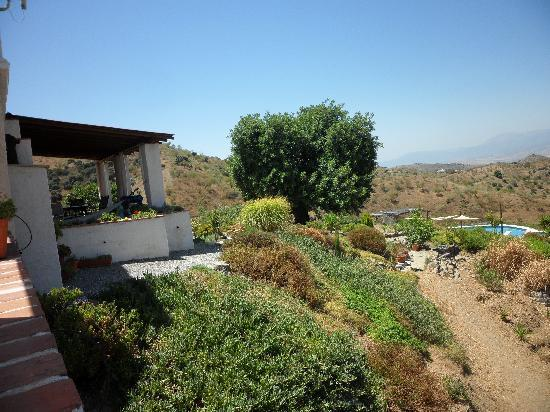Las Nuevas Alora: Side view of the property