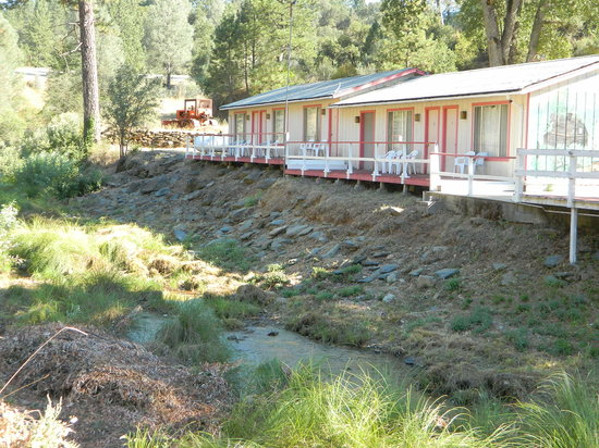 Muir Lodge Motel: Note the standing water, sludge