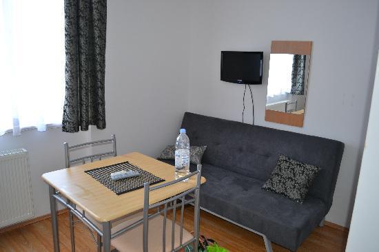 Villa Antunovac: Living area