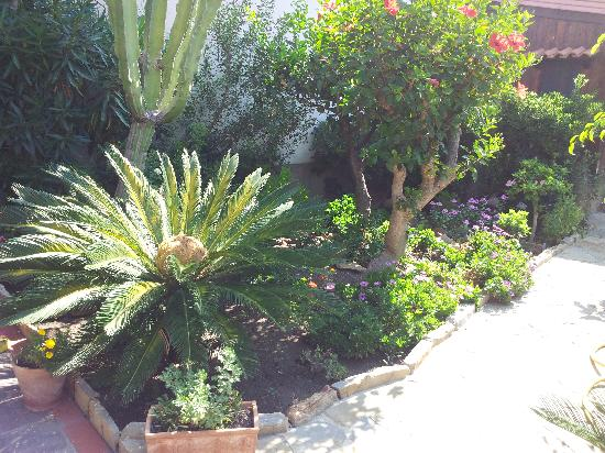 Capo d'Orlando, Italy: il giardinetto interno!!!