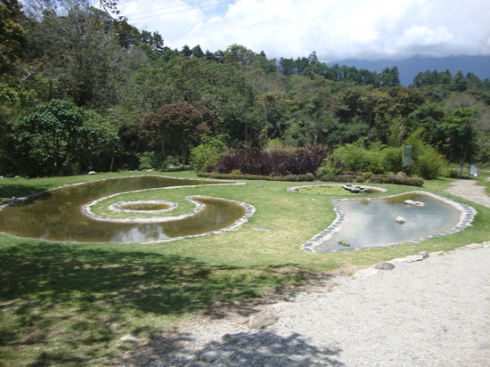Jardin Botanico de Merida