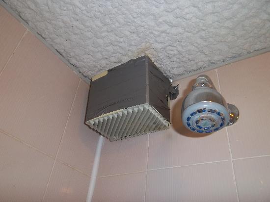 Allesley Hotel: Shower