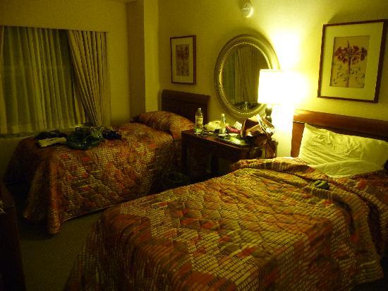 Hotel Edison Times Square: camera doppia Edison