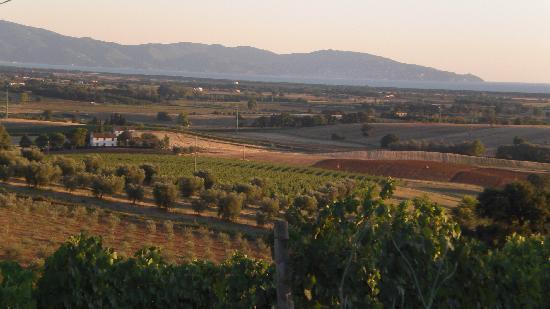 "Agriturismo Bella Vista: la ""bella vista"""