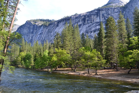 North Pines Campground Reviews Yosemite National Park