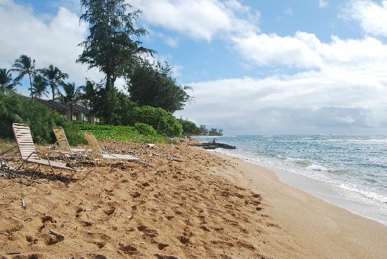 Aston Islander on the Beach: Spiaggia dell' hotel...