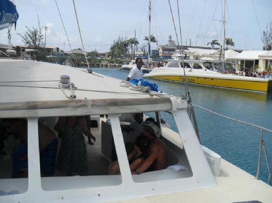 Turtle Beach by Elegant Hotels: On board the Catamaran - great trip for swimming with Turtles