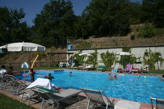 Aulla, อิตาลี: The hotel pool