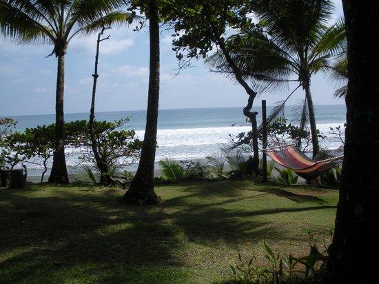 La Leona Eco Lodge: One of the inviting hammocks on the property