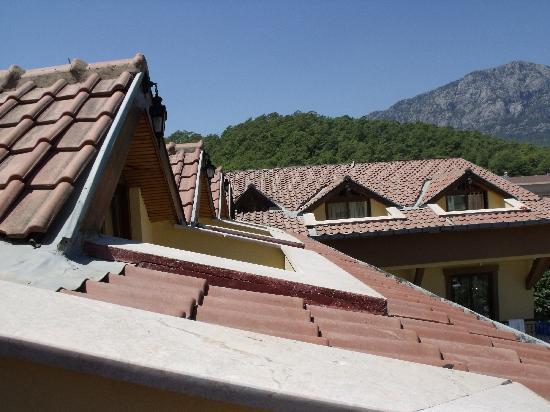 Orange Garden Hotel & Aparts: view from the balcony