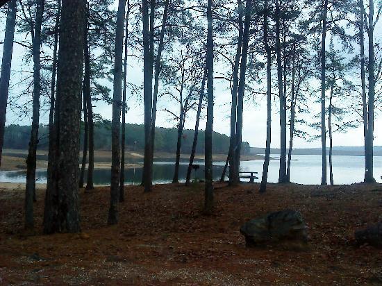 Comfort Suites : Arkansas Has Beautiful State Parks