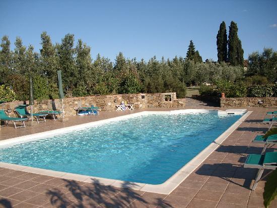Agriturismo La Canigiana: der Pool