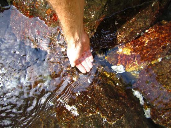 Emerald River Adventure: Take a drink!