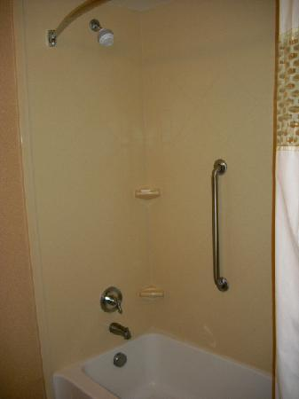 Hampton Inn & Suites Pittsburgh-Meadow Lands: Shower/Tub