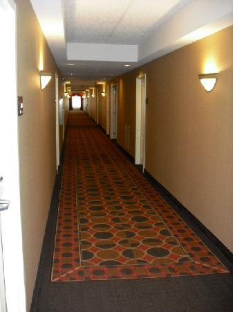Hampton Inn & Suites Pittsburgh-Meadow Lands: 2nd floor hallway