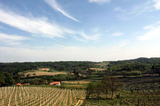 Vikend Pri Bubeki: view from the terace