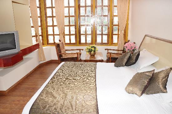 Hotel Gurupriya: Deluxe Room