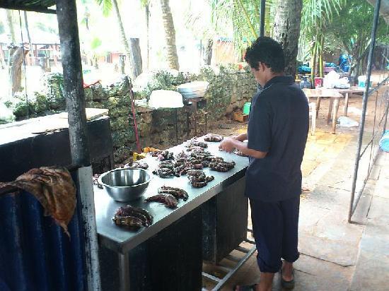 Joet's Guest House: Frsiche Zubereitung von Tiger Prawns