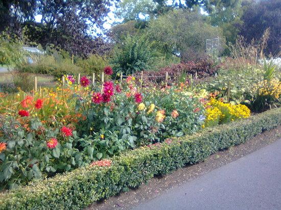 National Botanic Gardens (Dublin, Ireland): Top Tips ...