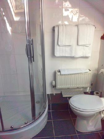 Annisgarth Bed and Breakfast: gleaming bathroom