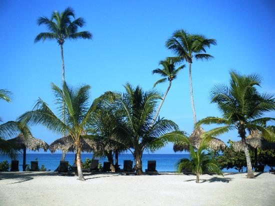 Hotel Weare Bayahibe: beach