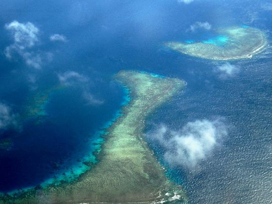 Emaho Sekawa Resort: coral reefs