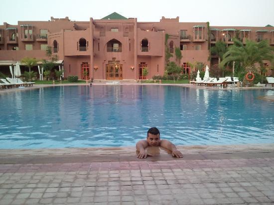 G Panda Palm Plaza Swimming pool - Pictur...