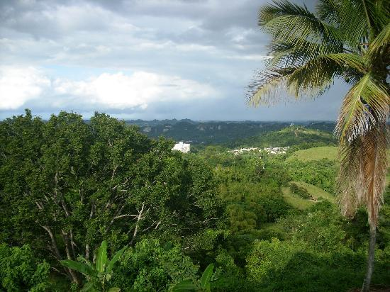 Ciales, Puerto Rico: Mountain View