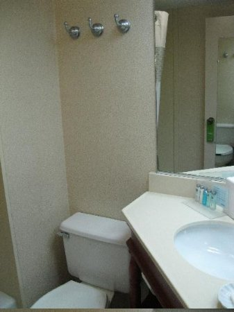 Comfort Inn Haywood Mall Area: Toilet to the left of the sink
