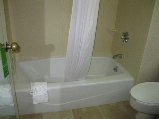 Baymont Inn & Suites Greenville: Bathtub/shower