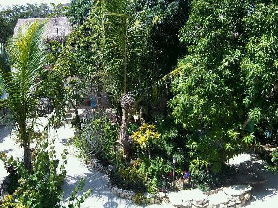 El Jardin de Frida: the garden