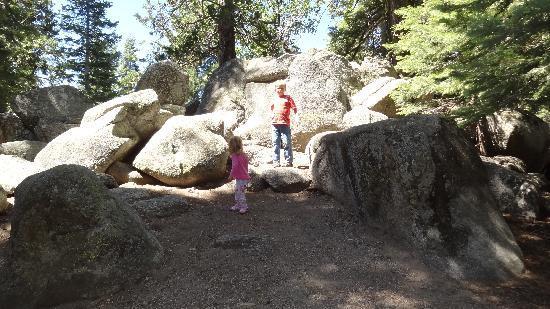 Azalea Campground 사진