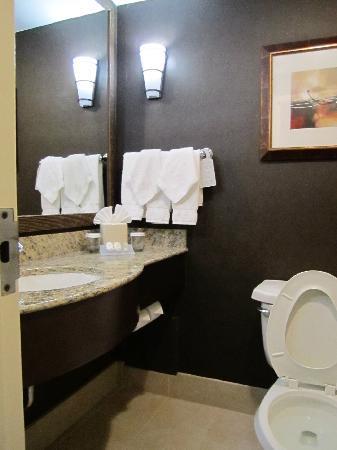 Hilton Garden Inn Austin Downtown/Convention Center: small bathroom