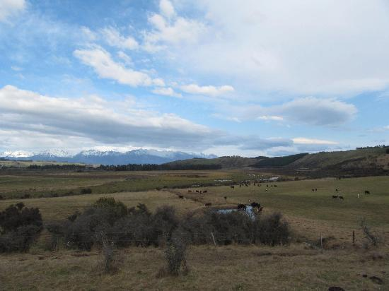 Westray Adventures - Horse Treks & Quad Tours: East side