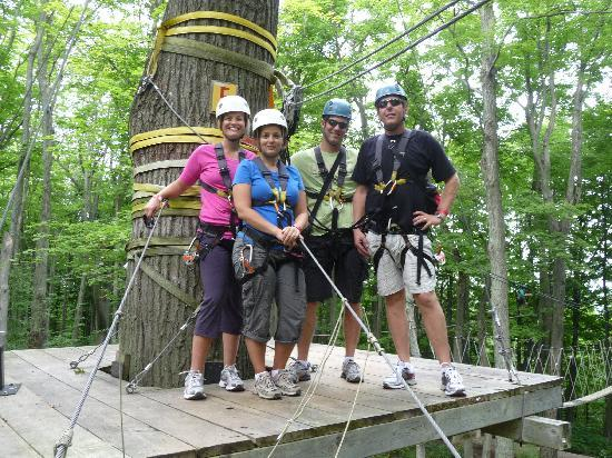 Blue Mountains, Kanada: treetop walk