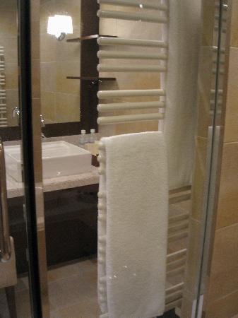 Hyatt Regency Hakone Resort and Spa: バスルーム4