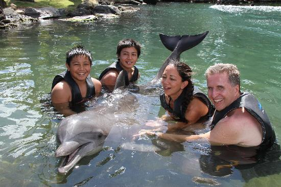 Dolphin Quest : Very enjoyable experience....