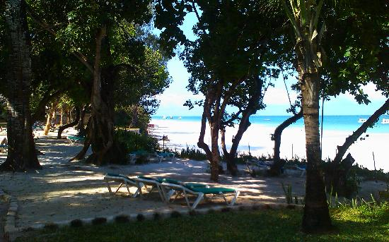 Baobab Beach Resort & Spa: Beach beds next to the beach