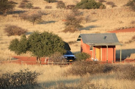 Bagatelle Kalahari Game Ranch: Campsite