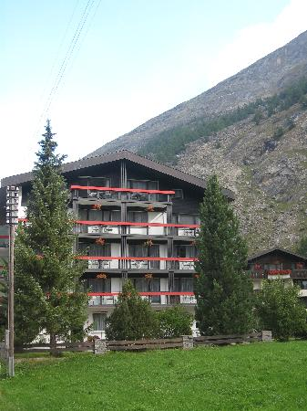 View of Hotel Alpenhof from meadow at side