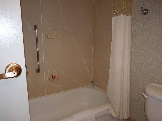 Hampton Inn & Suites Memphis - Beale Street : Tub - in need of a little upgrade