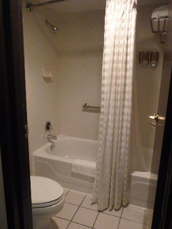 Hyatt Place Louisville-East: tub and toilet - so small!