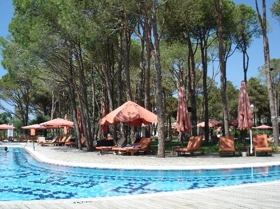 Ali Bey Resort Sorgun: havuzlar...