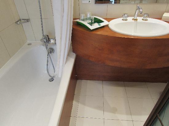 Holiday Inn Paris Gare de Lyon Bastille : Small but elegant bathroom