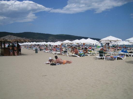DIT Evrika Beach Club Hotel: the beach