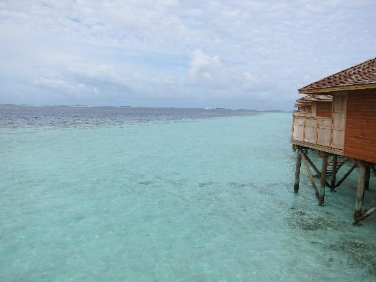 Vilamendhoo Island Resort & Spa: JWV view from 316
